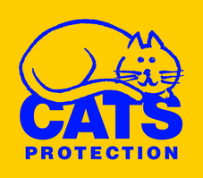 "Miss M (BICESTER) supporting <a href=""support/cherwell-cats-protection"">Cherwell Cats Protection</a> matched 3 numbers and won £25.00"